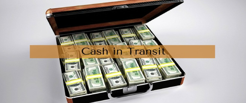 Cash In Transit Security Bags